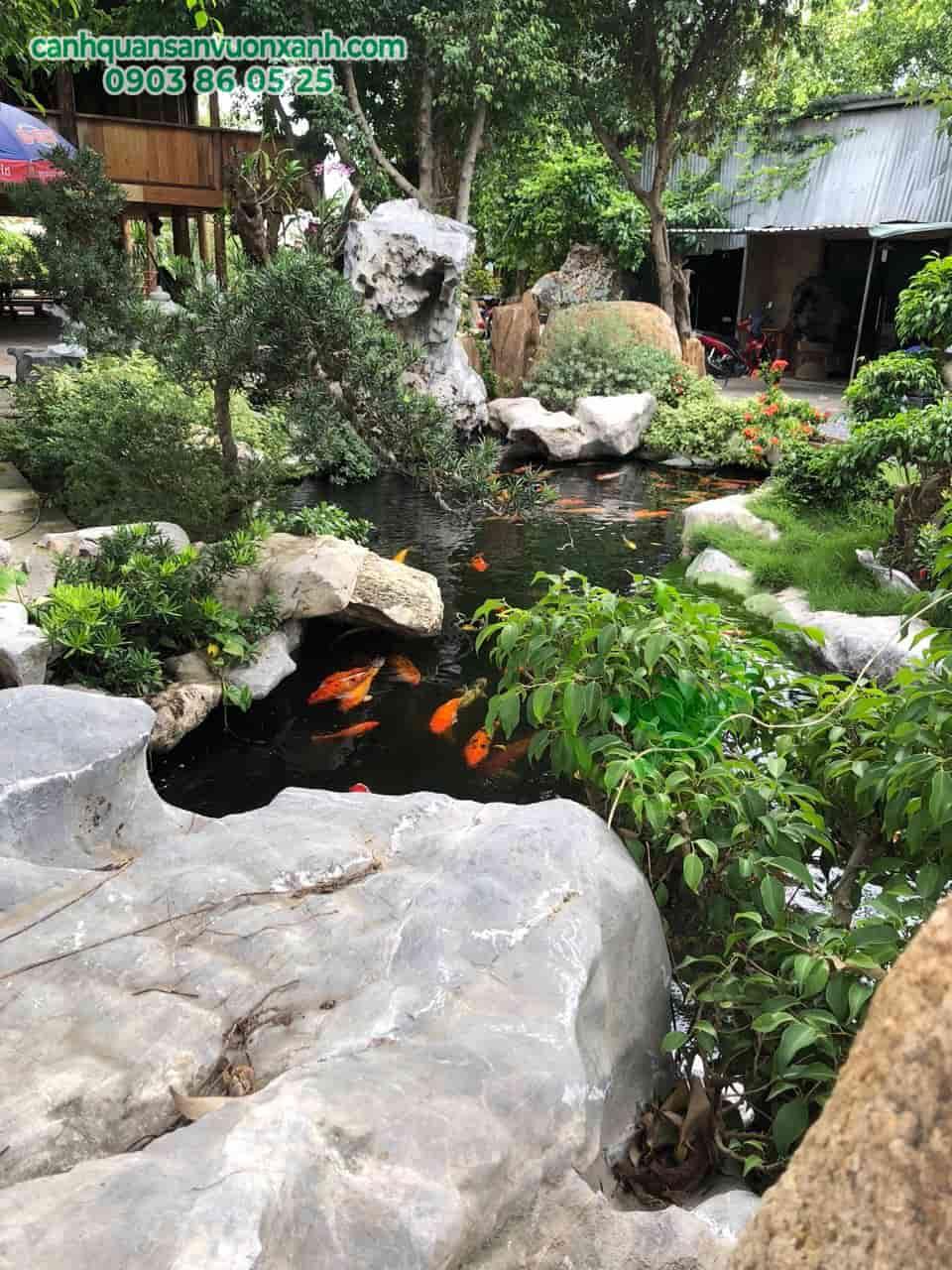hồ cá koi quán cà phê