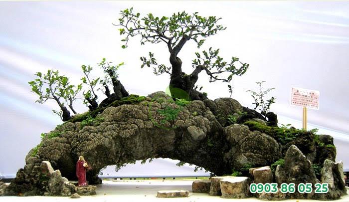 tieu-canh-bonsai-ket-hop-hon-non-bo-dep